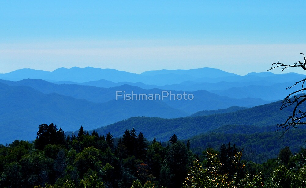 Smoky Mountains With Bird by FishmanPhoto
