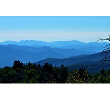 Smoky Mountains With Bird Photographic Print