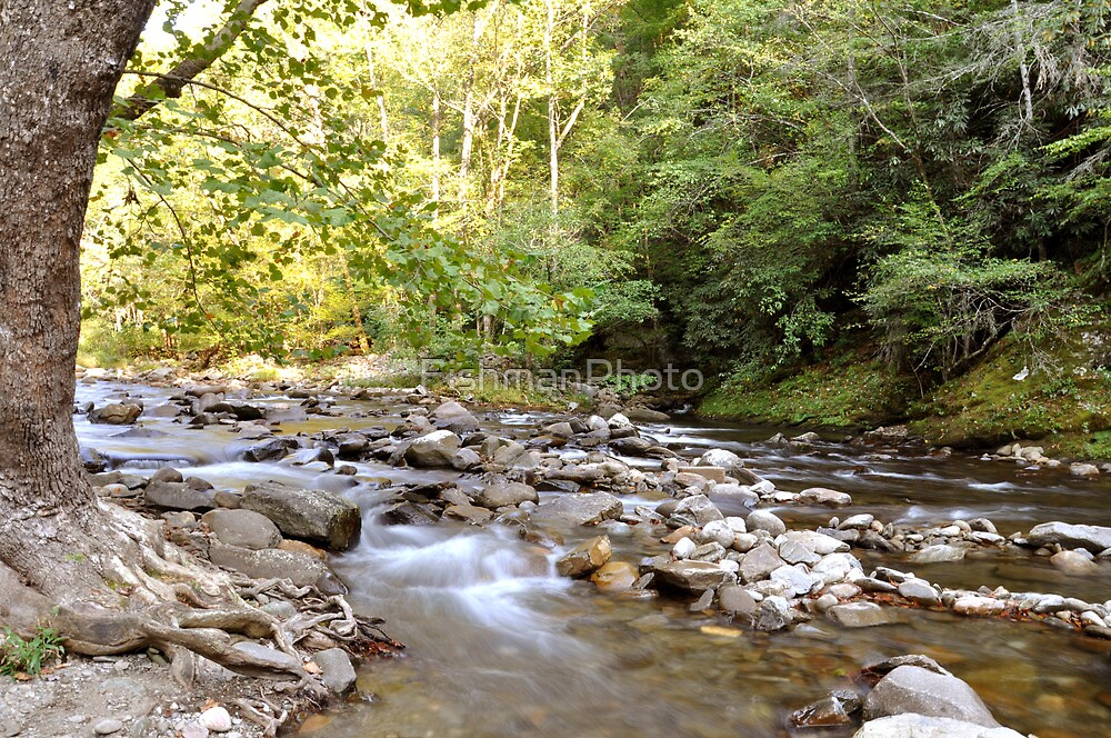 River Through Smoky Mountains 2 by FishmanPhoto
