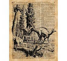 Dinosaurs in Forest Vintage Dictionary Art Illustration Photographic Print