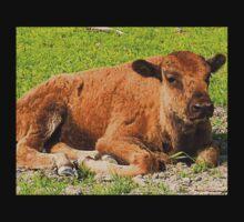 Baby Buffalo Kids Tee