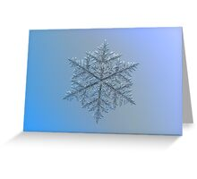Majestic crystal, real snowflake macro photo Greeting Card