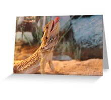 Funny Bearded Dragon Greeting Card