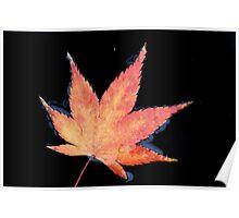 rainy autumn Poster