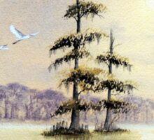Egrets Over Wakulla River Florida Sticker