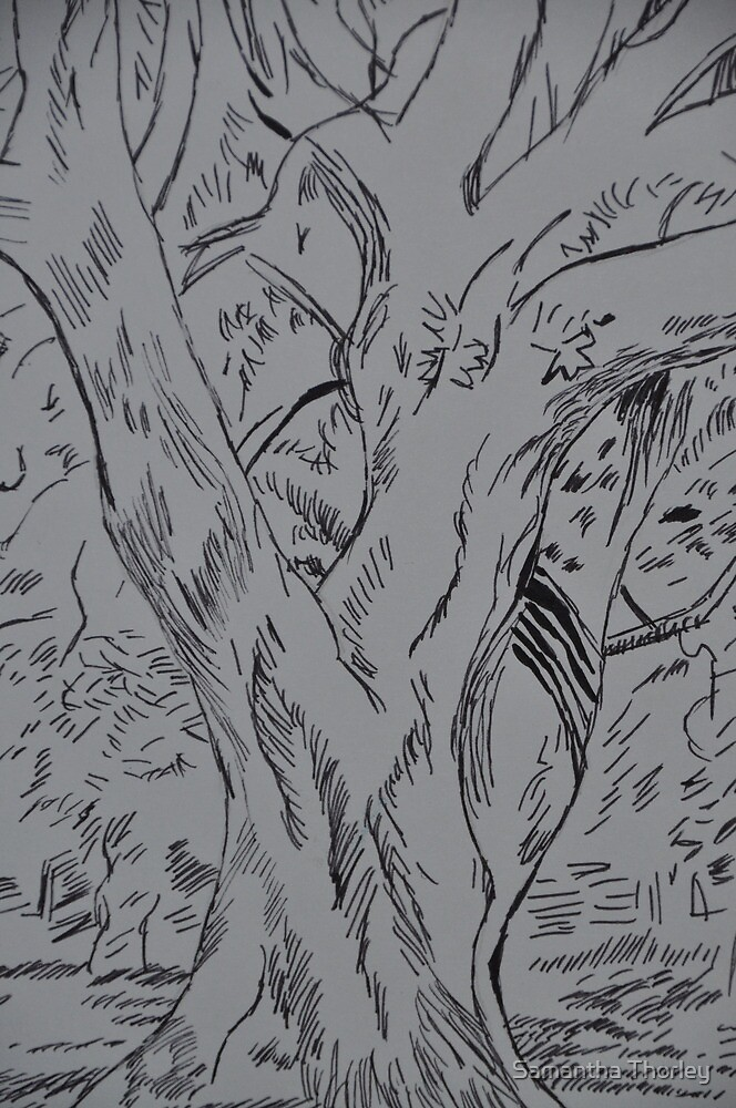 Fineliner pen drawing of a tree by Samantha Thorley