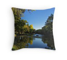 Splash of Fall Throw Pillow