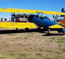Stearman Biplane by Paul Ewing