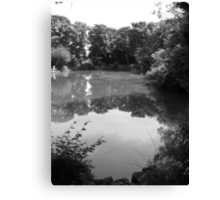 priory park in grey Canvas Print