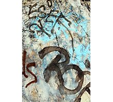 ash-731 Photographic Print