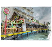 """Senor Frog"" on Woodes Rodgers Walk in Nassau, The Bahamas Poster"