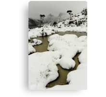 blizzard... Canvas Print