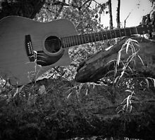 Music Nature: Guitar 5 by RedKitchen