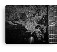 Music Nature: Rock 2 Canvas Print
