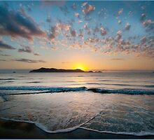 Sunrise, South Mission Beach,FNQ. by Susan Kelly