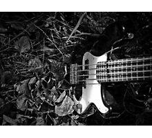 Music Nature: Bass Guitar 2 Photographic Print