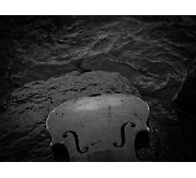 Music Nature: Violin 6 Photographic Print