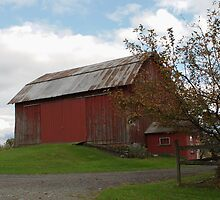 barn in fall by Penny Rinker
