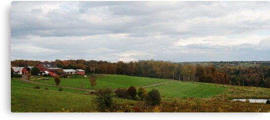 beautiful farm in fall by Penny Rinker