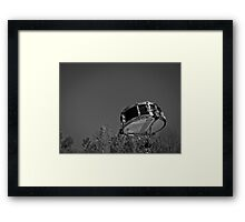 Music Nature: Snare 2 Framed Print