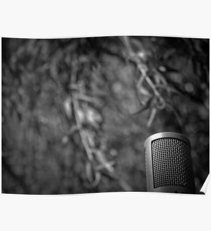 Music Nature: Microphone 2 Poster