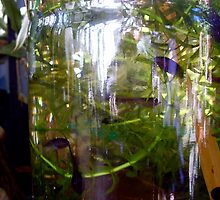 Green Frog Tadpoles in Glass by MardiGCalero