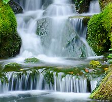 Flowing  Falls by Don Schwartz