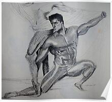 Male Model  Poster