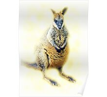 Little Wallaby Poster