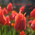 Especially for you, with love, tulips. by elphonline