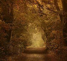 Autumn Paradise by EbyArts