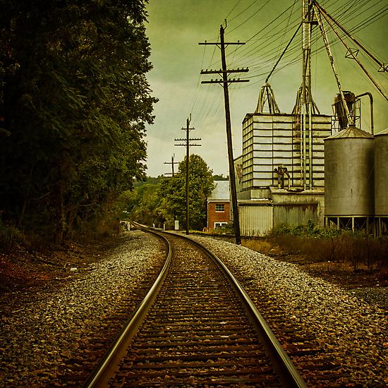 Endless Journey by Andrew Paranavitana