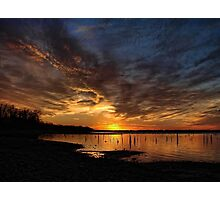 A Lake Full Of Stumps Photographic Print