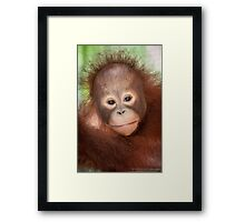 Solutions for the long-term survival Framed Print