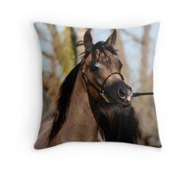 Master Klass  Throw Pillow