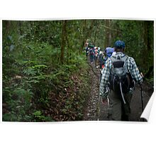 Trekking Kilimanjaro Poster