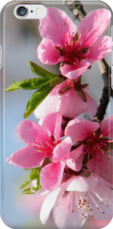 Peach Blossom iPhone case design by Dennis Melling