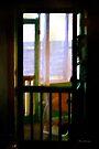 Carolina Morning  by RC deWinter