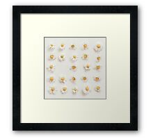 Daisy Collection Framed Print