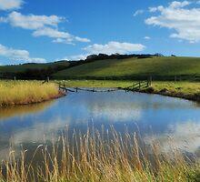 Sunken Fence by Marilyn O'Loughlin