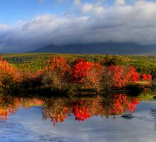 Reflections in Maine by Sharon Batdorf
