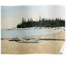 Spring Driftwood Poster