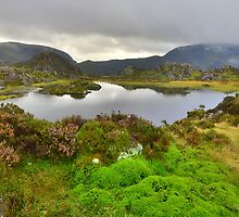 The Lake District: Innominate Tarn by Rob Parsons