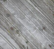 timber by mrivserg