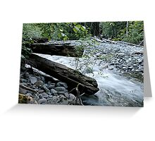 Down By The Ol' Creek Greeting Card