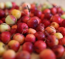 red apples by mrivserg