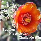 Top Ten Place Getter Winner by globeboater