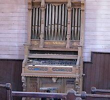 Old Organ, Bodie, California by Angela Micheli Otwell