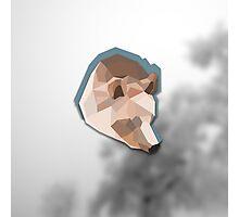Geometric Winter Bear Photographic Print