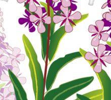 pink meadow flower fireweed design Sticker